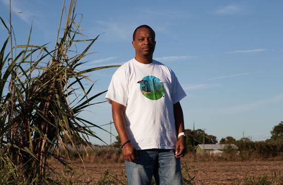 The Burning Problem of America's Sugar Cane Growers
