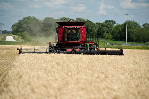 France Beating U.S. in Wheat Exports After Drought