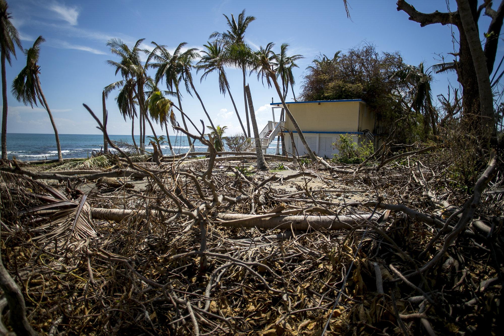 Αποτέλεσμα εικόνας για US Hurricane season causes $202.6 billion damage