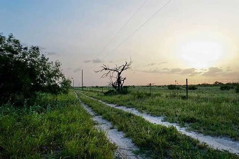 A dirt road runs along a barbed wire fence on Dr. Michael Vickers' ranch located south of Falfurrias, Texas on July 3