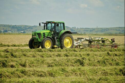 Hay Sent to China Cheaper Roiling U.S. Dairies