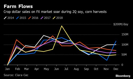 Argentina Is Anxious for Soy Dollars. Farmers Won't Play Ball