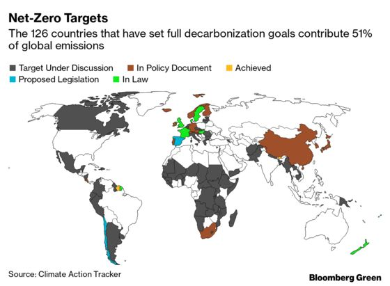 U.S. Climate Reversal Will See Biden Join World's Green Momentum
