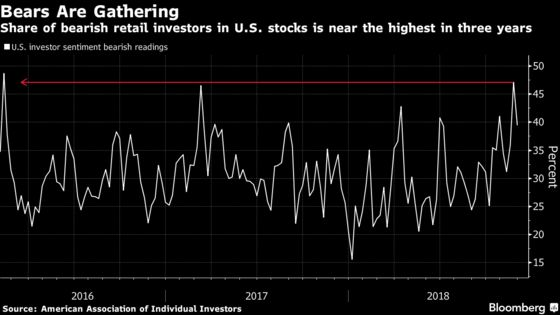 Being Too Bearish on Stocks Is Becoming a Hazard, Investors Say