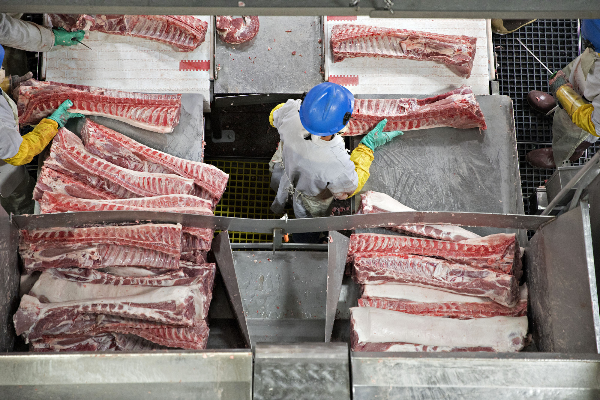 Butchers place pork ribs on a conveyor belt at aprocessing facility in Milan, Missouri, U.S.