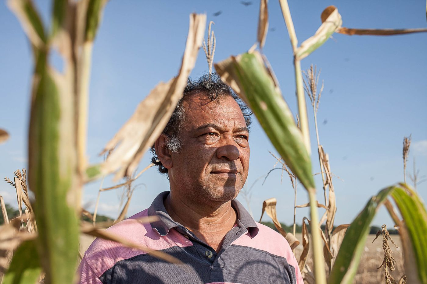 """There's no seeds or fertilizer. On top of that, there's regular shortages of food and power cuts,"" said  farmer Johnny Villaroel, 49. ""I work at a loss, but, sadly, that's all we know how to do: plant."""