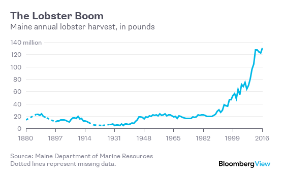 Maine Is Drowning In Lobsters Bloomberg