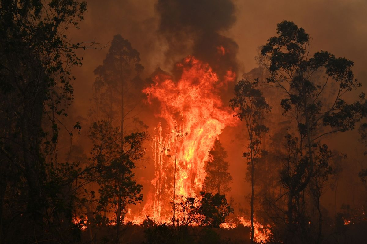 Bushfires Illuminate the Price of Burning Coal