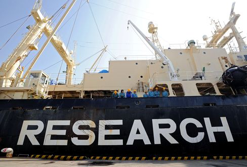 The Japanese Whaling Fleet's Nisshin Maru Ship Sits in Tokyo