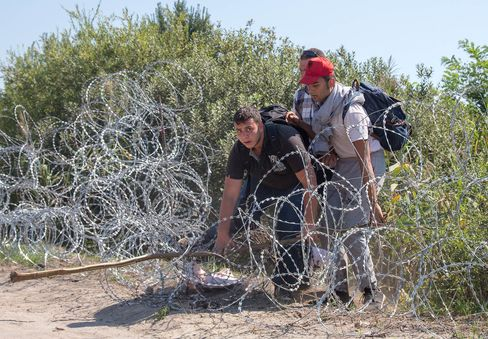 Migrants scramble through the border fence between Serbia and Hungary close to the village of Roszke near Szeged, Hungary.