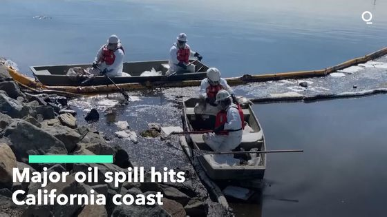Massive Oil Spill Washes Up on Southern California's Beaches