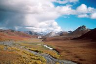 Arctic National Wildlife Refuge Eyed for Oil Drilling