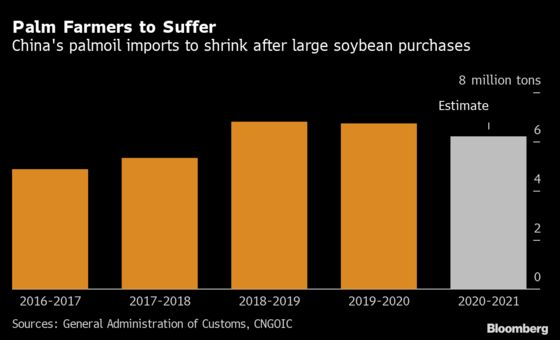 China's Pigs Become Unexpected Threat to Palm Oil's Rally