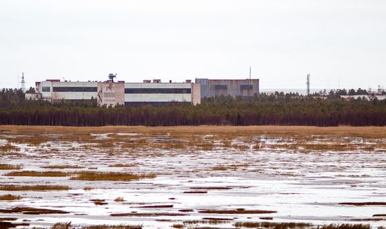 Russia Blames Nuclear-Accident Doctor's Irradiation on Mushrooms