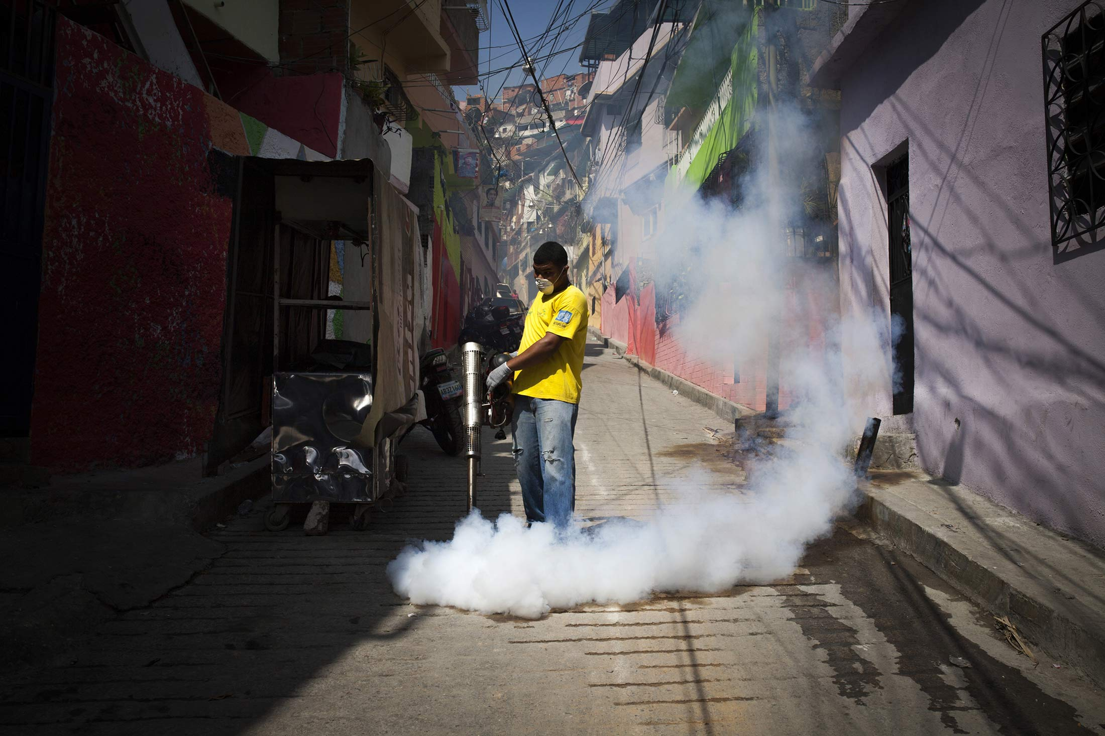 Science Takes a Fresh Swat at Zika