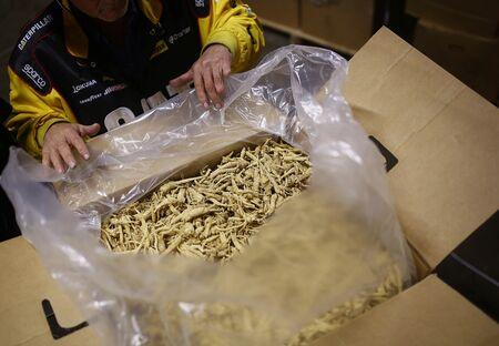 Harvested ginseng sits inside VanBerlo's warehouse.