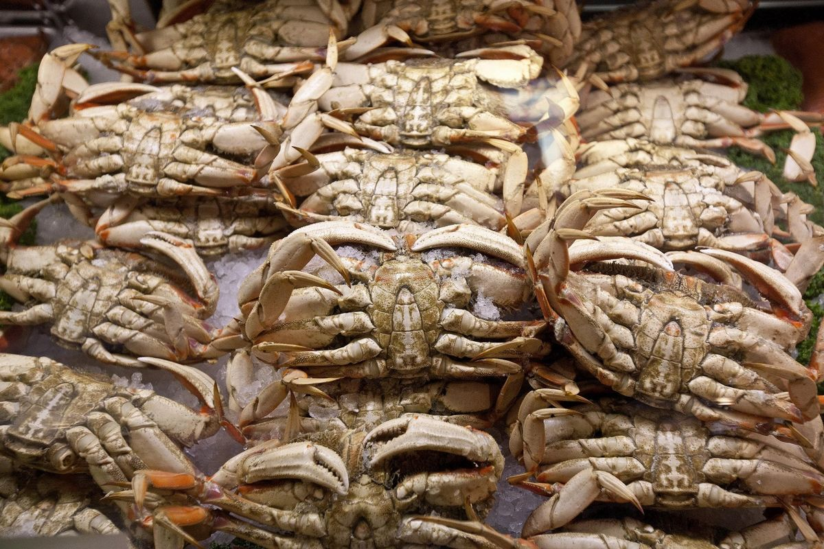 Chevron, Exxon Face Fisheries in Lawsuit Over Climate and Crabs