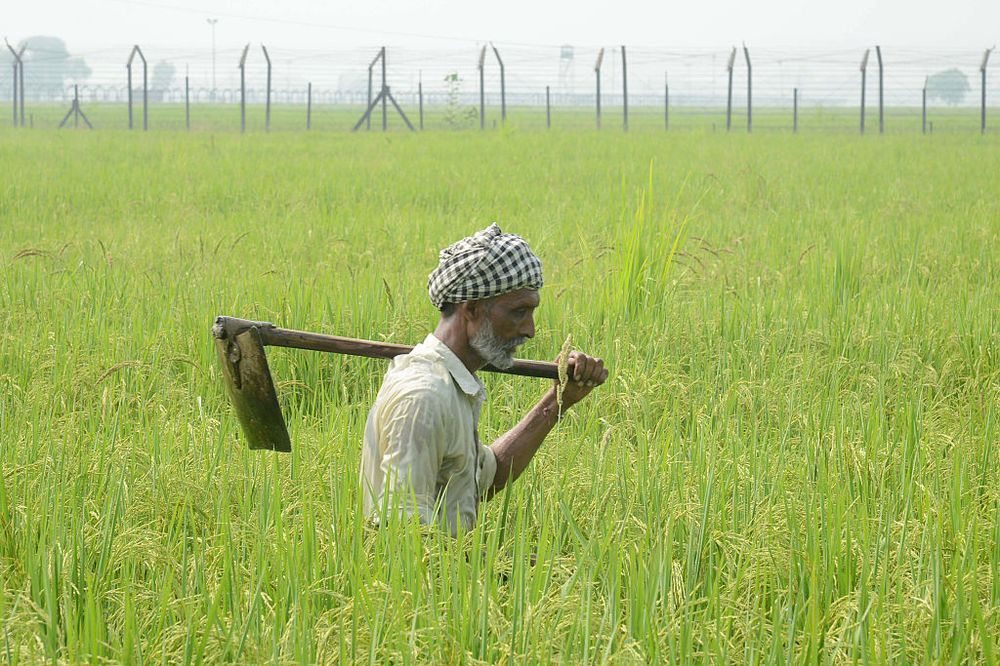 India's Farmers Aren't Committing Suicide Because of High Debts ...