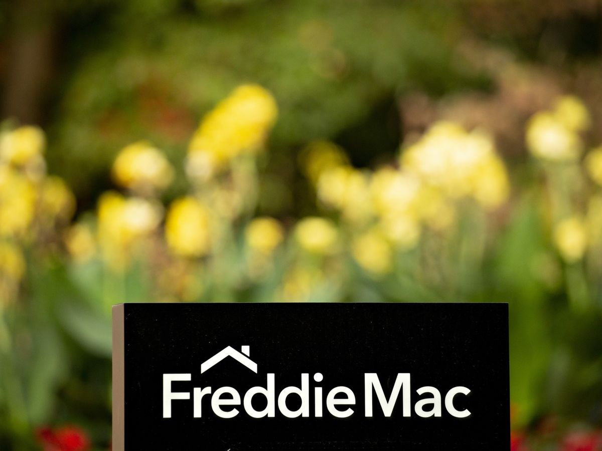 All Is Not Lost for Fannie and Freddie Shareholders