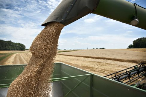 Wheat Stocks Contract as Drought Reaches From U.S. to Russia